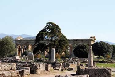 1-Paestum